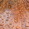 Waterdrops on wood